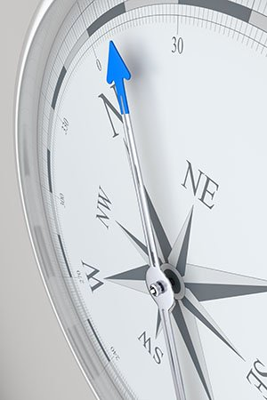 Technivista Blue North on Compass